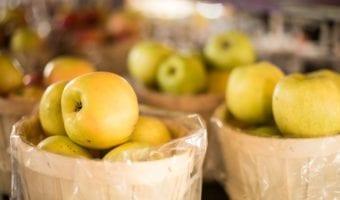Pennings Orchard – UPICK