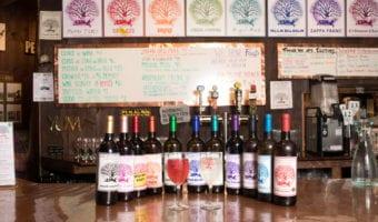 Palaia Winery