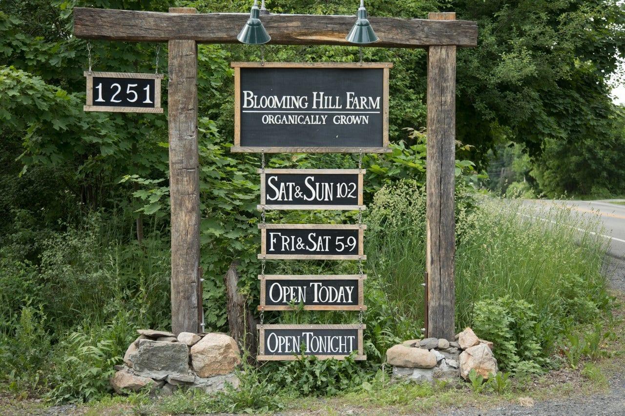 Blooming Hill Organic Farm
