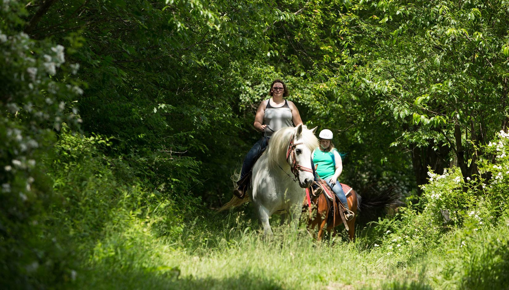 Horse Trails