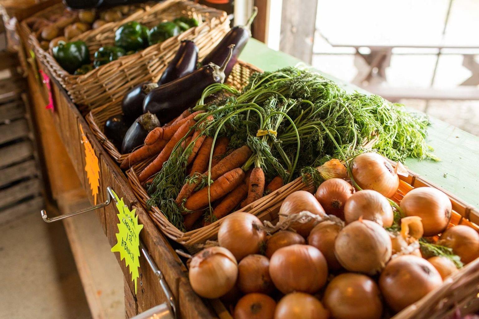 Winter Farm Markets