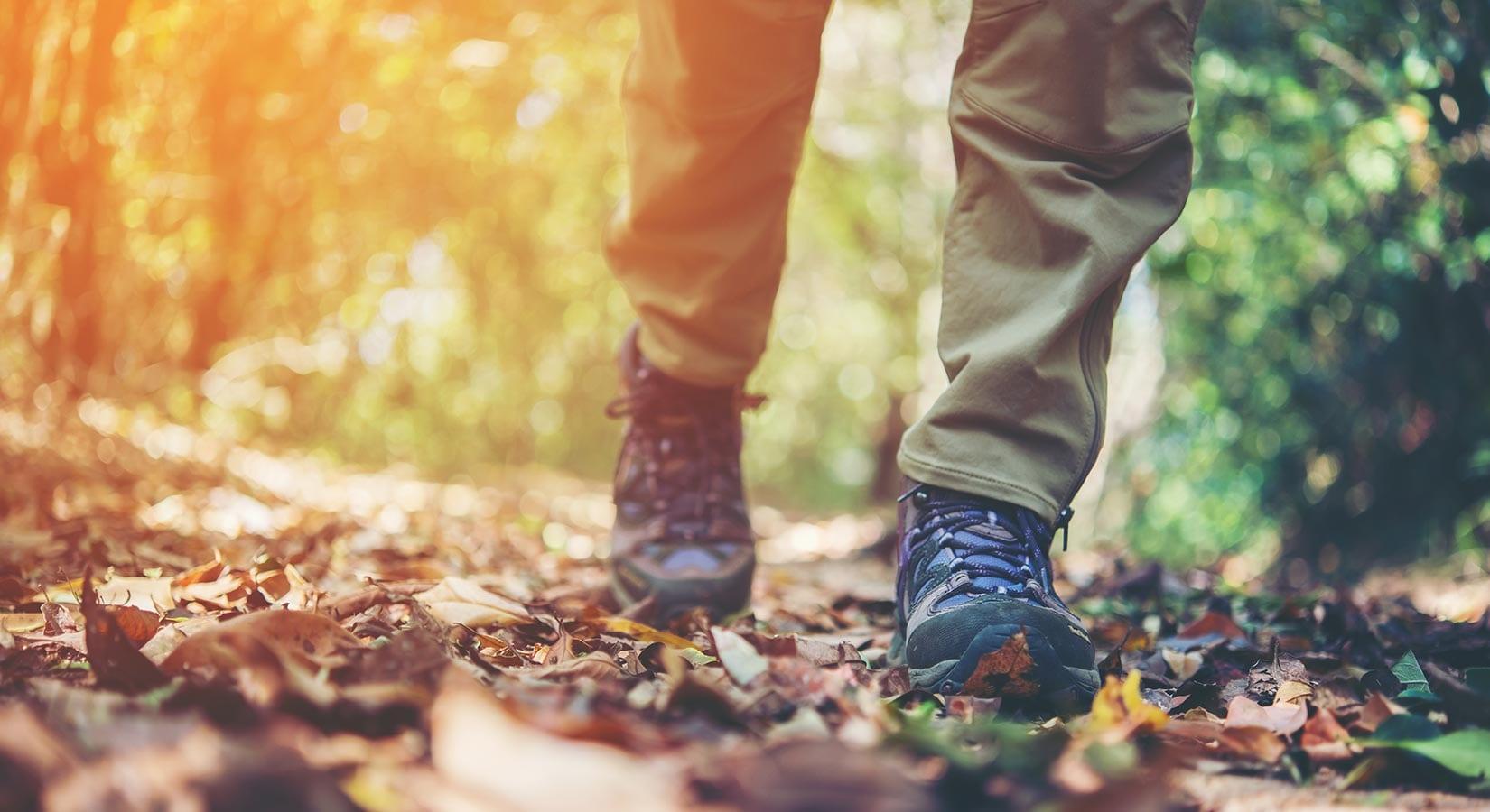 Hiking & Trails